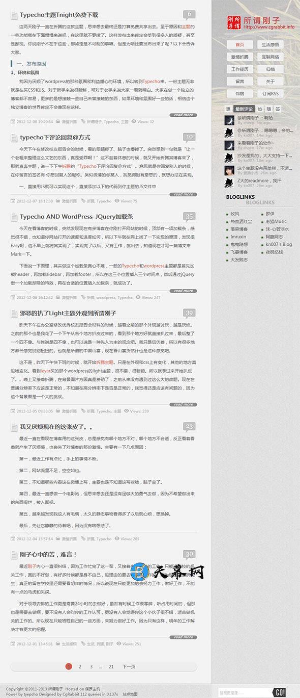 Typecho免费主题Tnight 灰色简洁风格模板 博客模板 第1张